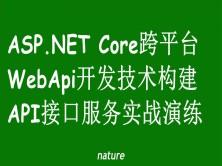 ASP.NET Core WebApi构建API接口服务实战演练