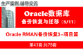 实战Oracle RMAN备份与恢复(基础、案例、项目)