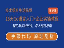 16天Go语言入门+企业实操教程