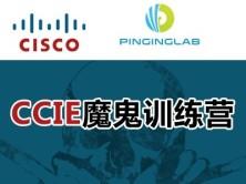 CCNA网络基础100集视频课程-PingingLab CCIE魔鬼训练营