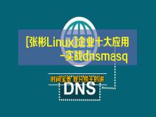 [张彬Linux]企业十大应用-实战dnsmasq
