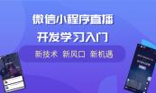 微信小程序开发全家桶:开发入门案例解析及广告位开发
