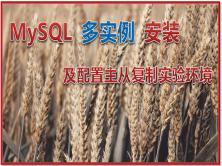 MySQL 多实例安装 及配置主从复制实验环境
