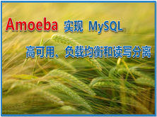 Amoeba 实现 MySQL 高可用、负载均衡和读写分离