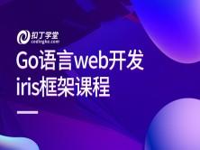 Go语言web开发iris框架课程