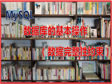 MySQL 数据库的基本操作(数据完整性约束)