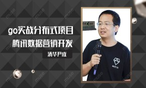 尹成带你实战go分布式项目腾讯数据营销开发
