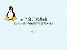 云平台开发-KVM分析和shell脚本管理KVM