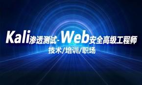 kali渗透测试/web安全/白帽子黑客/攻防/0基础/2020kali的vmware版本安装