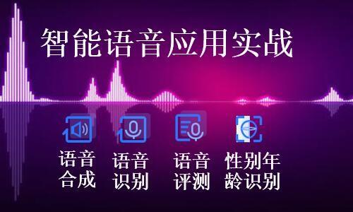 智能语音应用实战(语音合成,语音听写,语音评测,年龄性别识别)