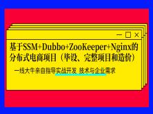 基于SSM+Dubbo+ZooKeeper+Nginx分布式电商项目(毕设、完整项目和造价)