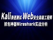 kali linux渗透测试/web安全/白帽子黑客/网络安全/抓包神器Wireshark分析