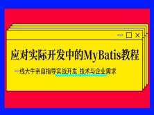 应对实际开发中的MyBatis教程