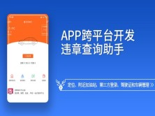 【小鹿线】违章查询助手App