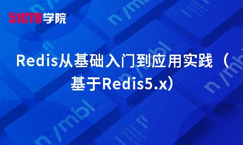 Redis从基础入门到应用实践(基于Redis5.x)