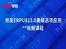 用友ERPU813.0高级选项应用**视频课程