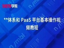 **体系和 PaaS 平台基本操作视频教程