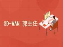 SD-WAN/软件定义网络/思科CCIE/郭主任主讲