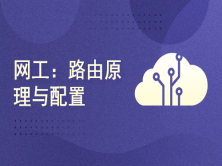 2021朱小平软考网络工程师(网工):路由原理与配置