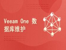 vMware vSphere 的日常维护系列视频课程(28)Veeam One 数据库维护