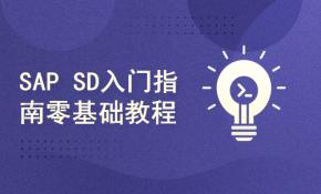 易拓大学SAP SD入门课程 零基础指南教程