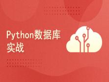 Python数据库实战
