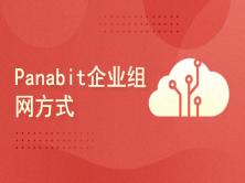 Panabit实战2021-企业组网方式