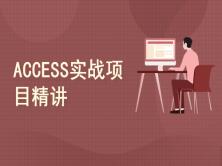 ACCESS实战项目精讲
