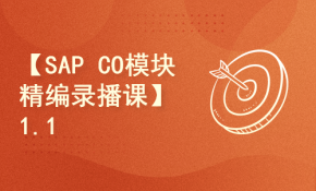 【SAP CO模块精编录播课】1.1SAP通讲