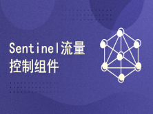 【尚硅谷】阿里巴巴Sentinel流量控制组件教程   (本课程不提供答疑服务)