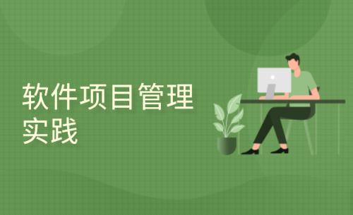 软件项目管理实践