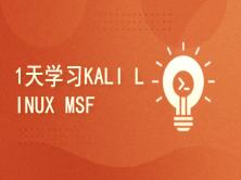 Kali与编程:如何1天学习KALI LINUX MSF***框架