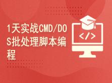 Kali与编程:如何1天实战CMD/DOS批处理自动化编程