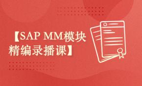 SAP MM模块精编录播课
