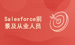 Salesforce前景及从业人员现状