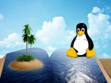 嵌入式Linux项目:数码相框+视频监控+电源管理教程(韦东山3期)