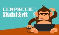 CCNP&CCIE路由技术系列课程专题