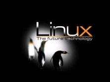 苏勇老师Linux DNS域名服务视频课程