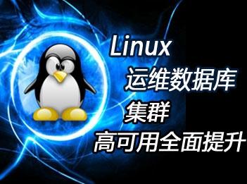 Linux运维工程师高级套餐-Linux运维数据库、集群、高可用多面提升专题