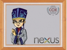 数据中心视频课程-Nexus交换机(现任明教教主数据中心CCIE核心课程)