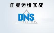 企业运维实战之DNS实战视频课程【DNS实时查询统计/ACL/主从/分离解析】