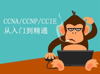 CCIE魔鬼训练营视频课程专题(CCNA/CCNP/CCIE基础与提升)